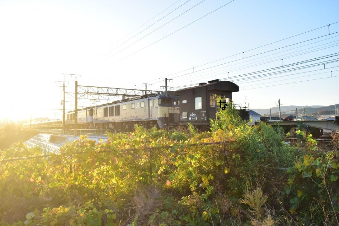 f:id:kyouhisiho2008:20191203214101j:plain