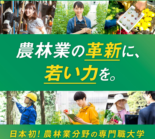 f:id:kyouikuloans:20190912133216p:image