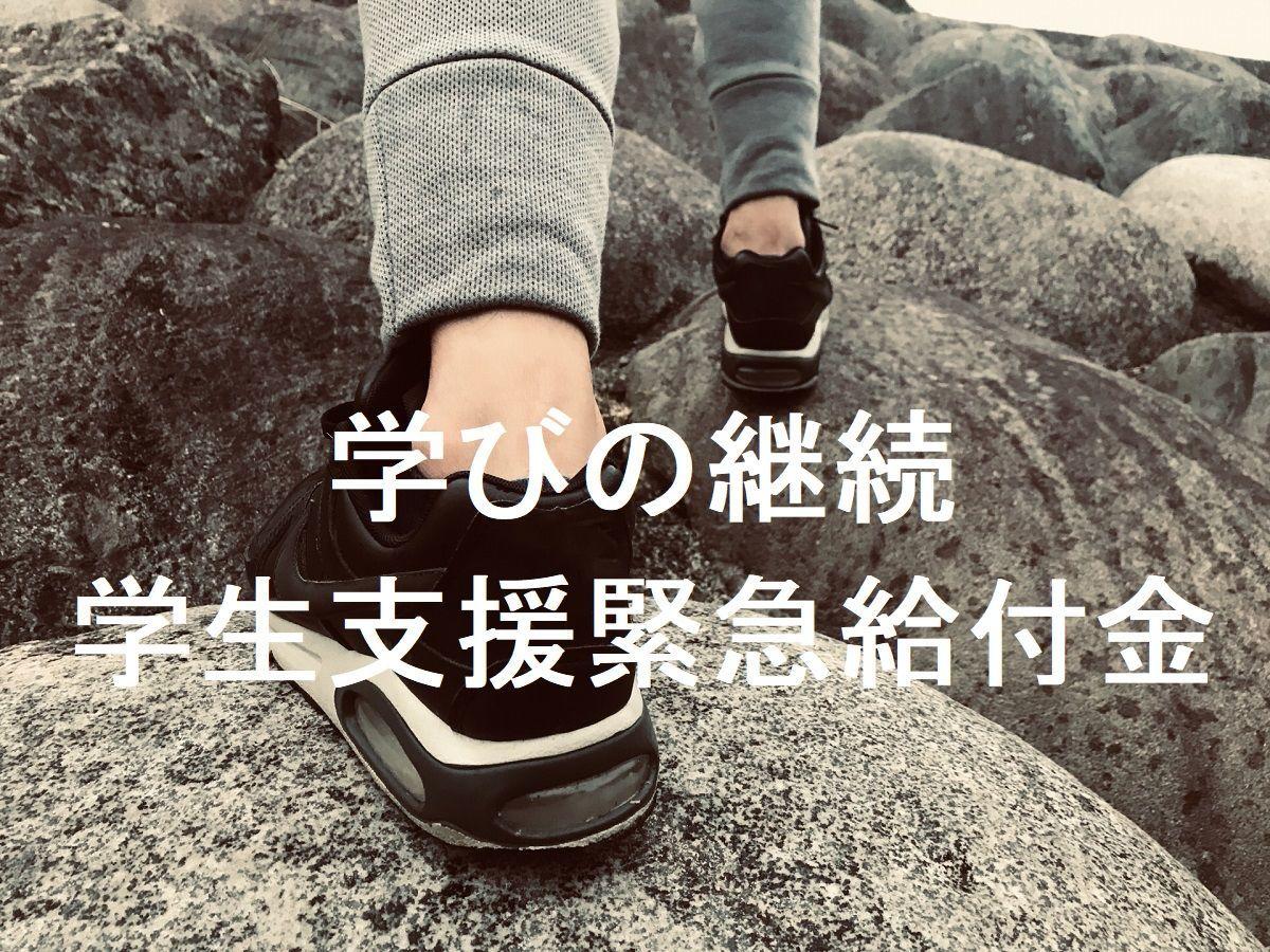 f:id:kyouikuloans:20200525150133j:image