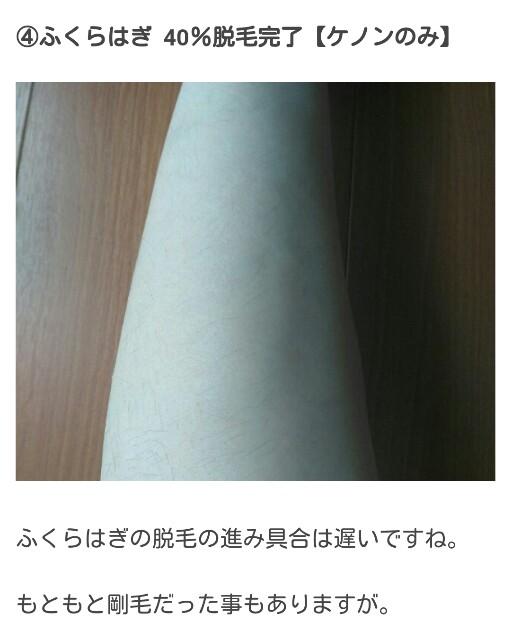 f:id:kyouin:20200212123816j:image
