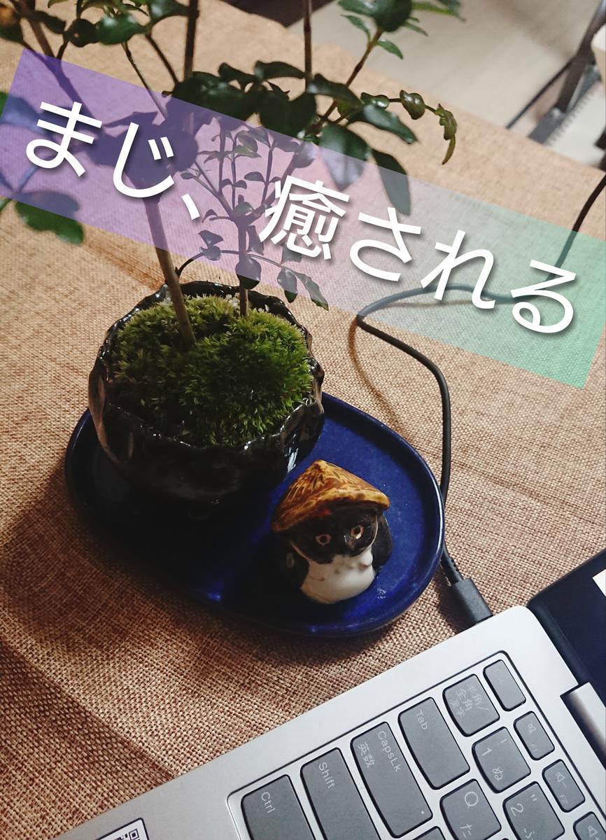 f:id:kyoukirei:20200119205210j:plain