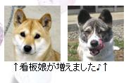 f:id:kyoumikannsinnkoudouryoku:20161112223542p:plain