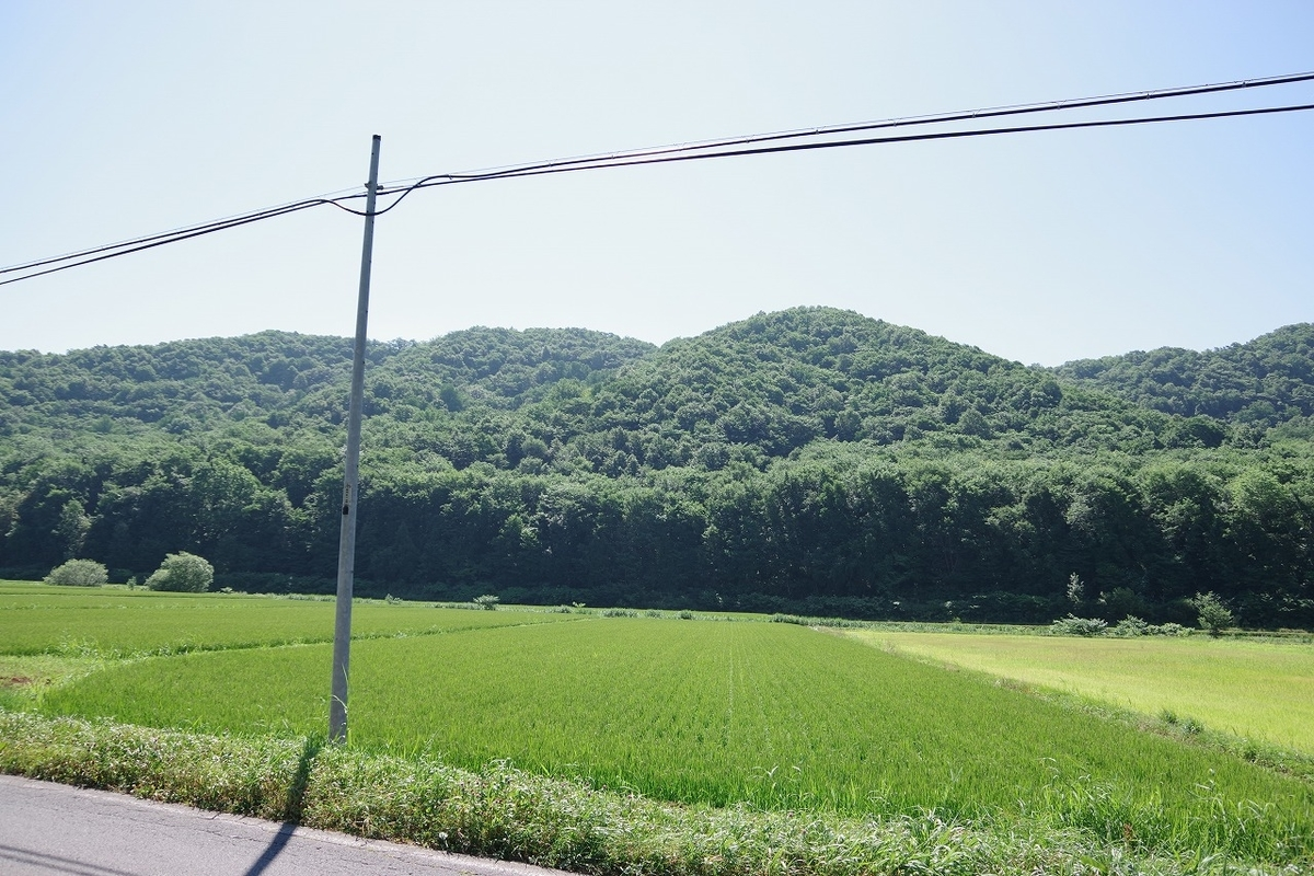 f:id:kyoumo_ichinichi:20190325221728j:plain