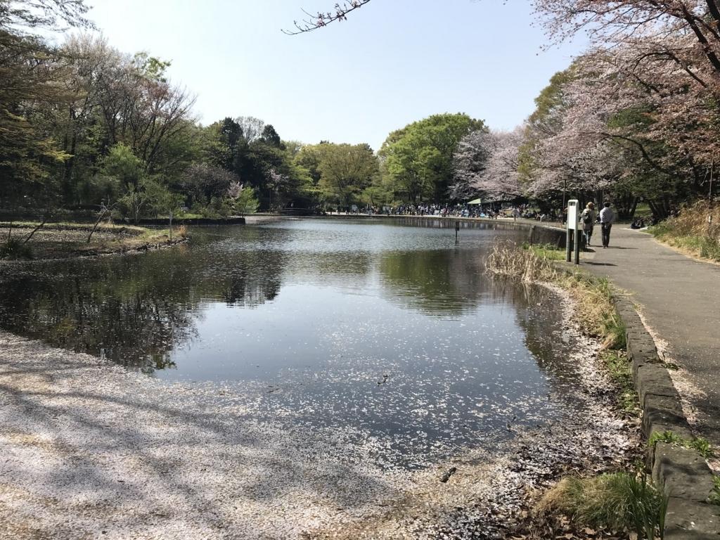 f:id:kyoumo_maru:20180401215203j:plain