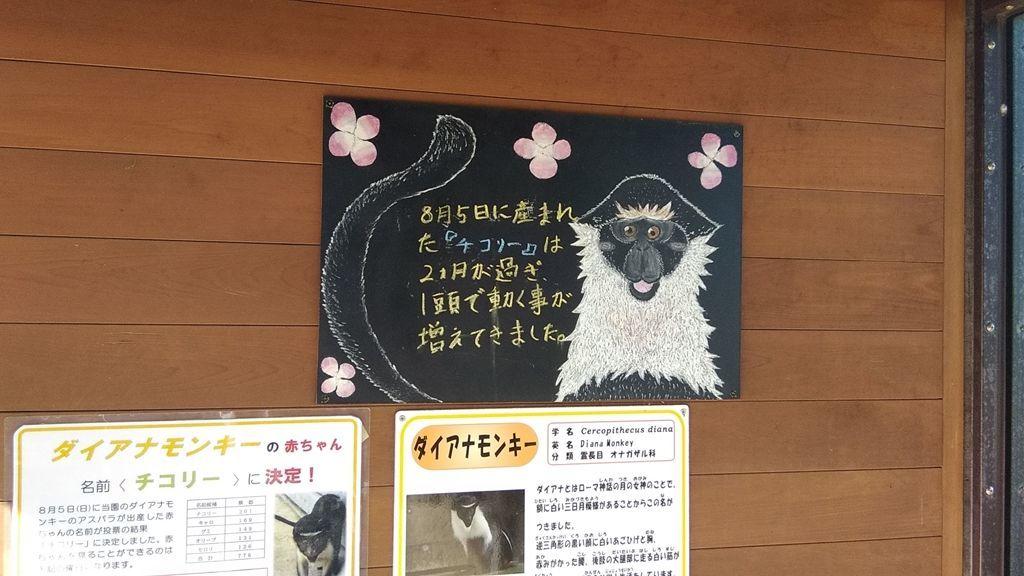 f:id:kyoumoe:20181129234054j:plain