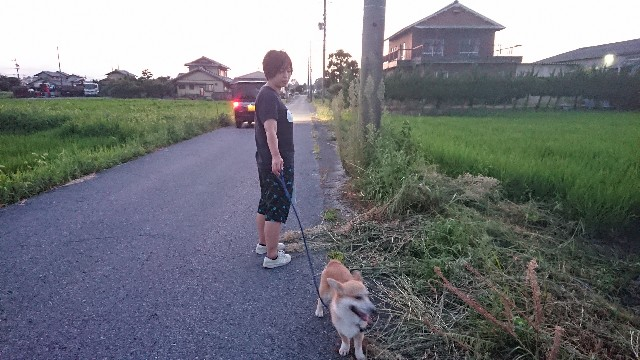 f:id:kyoumoholidays:20180807003835j:image
