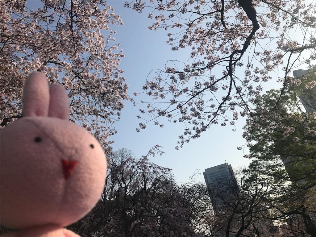 f:id:kyoumozatsu:20180404091434j:image