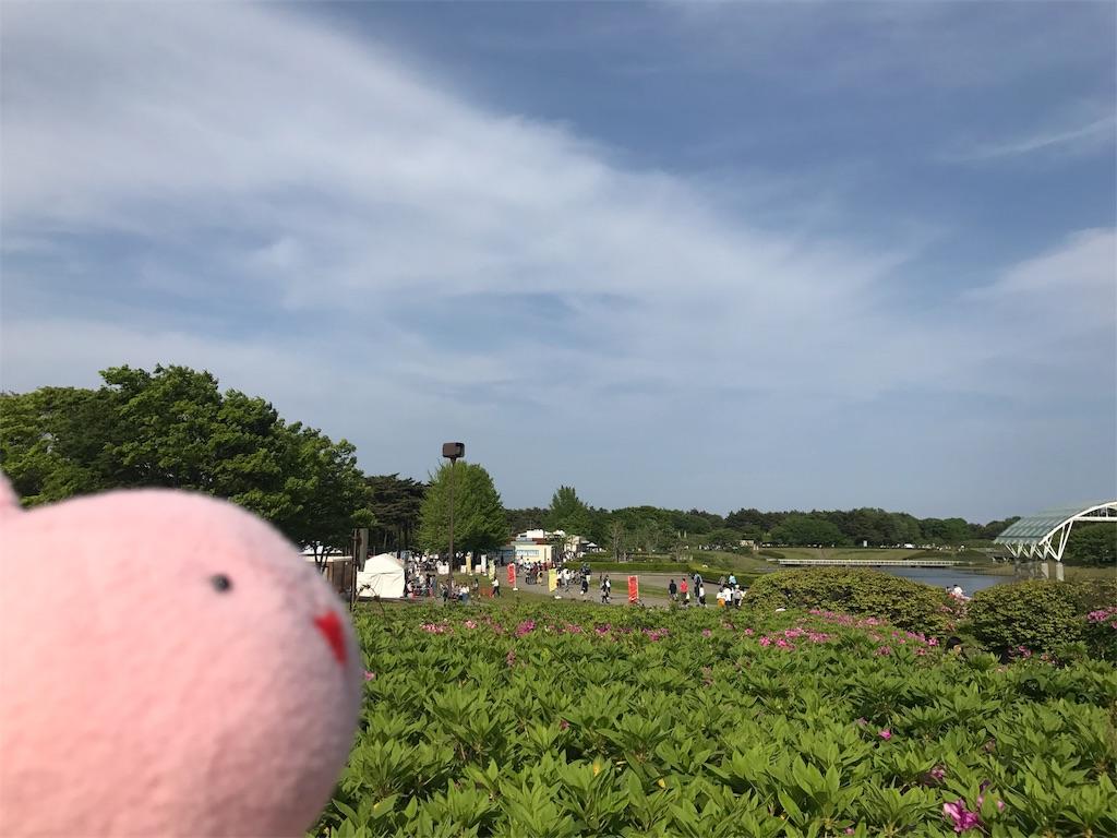 f:id:kyoumozatsu:20180504191304j:image