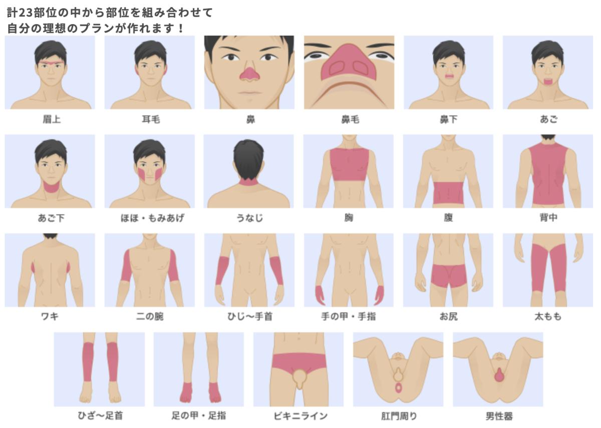 f:id:kyounohitoiki:20201230214318p:plain