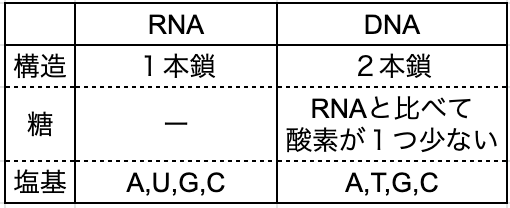 RNAとDNAの違い