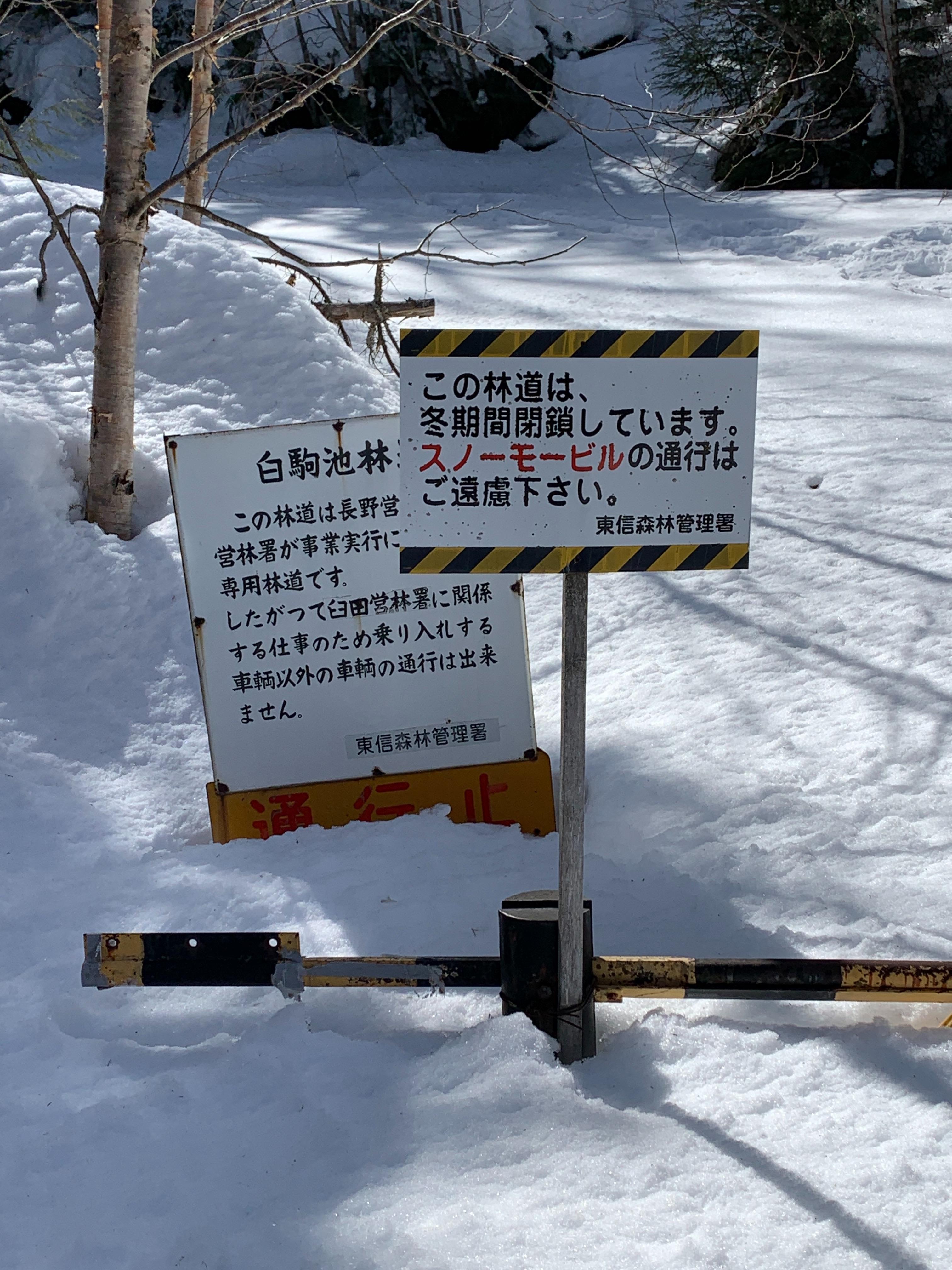 f:id:kyousima:20210320181316j:image