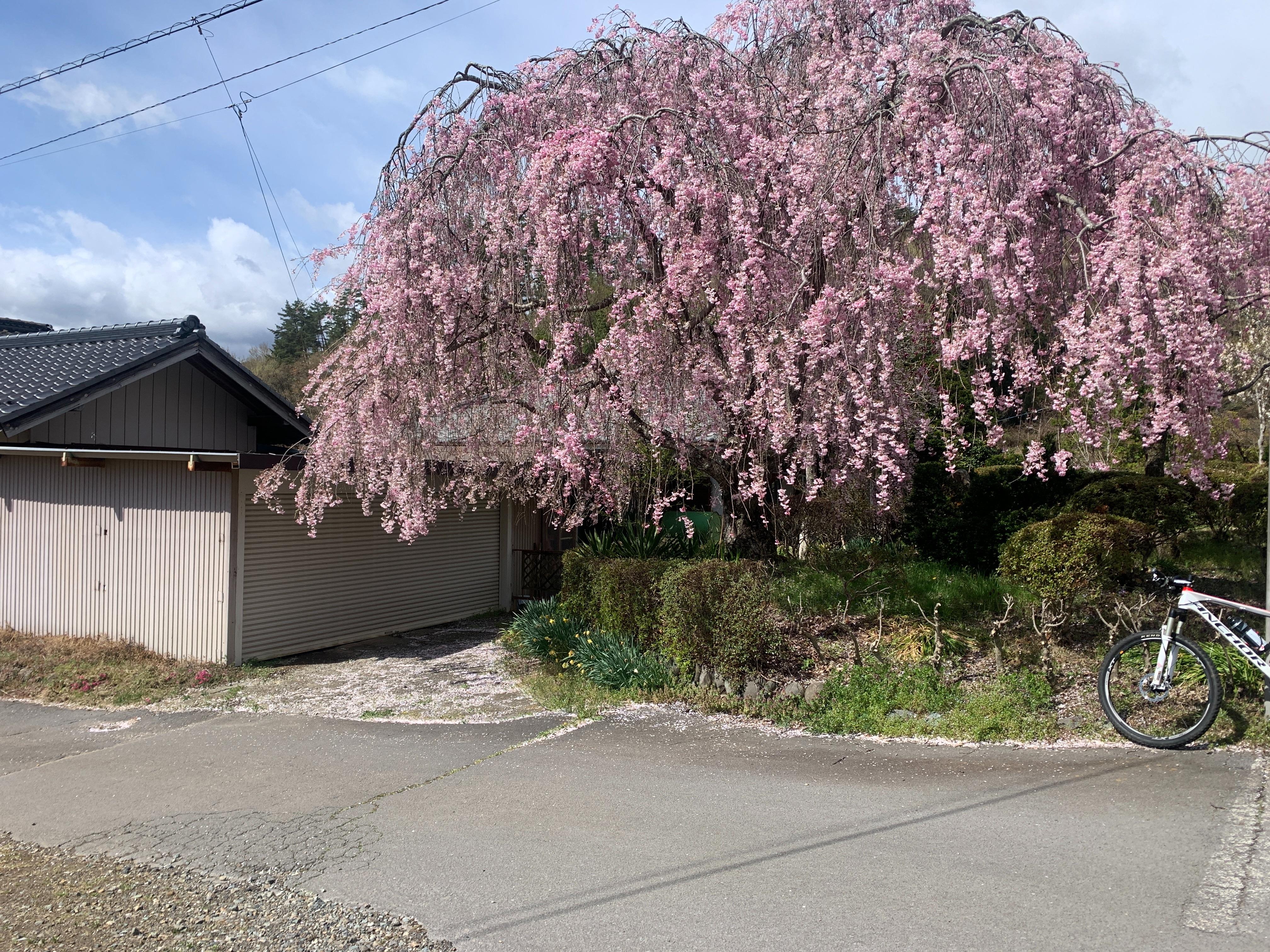 f:id:kyousima:20210418110233j:image