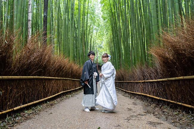 一番美しい嵯峨野の竹林スポット!