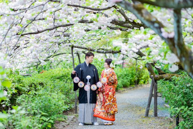 満開の八重桜がトンネルになってました!