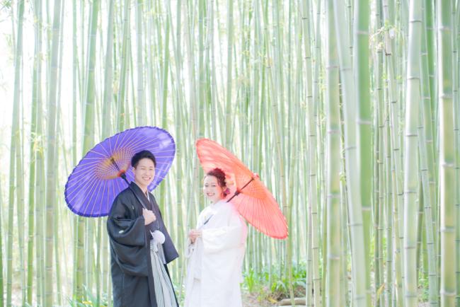 竹林も涼しく撮影可能です!
