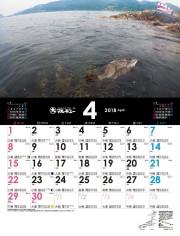 f:id:kyoya7zon:20171111105216j:plain
