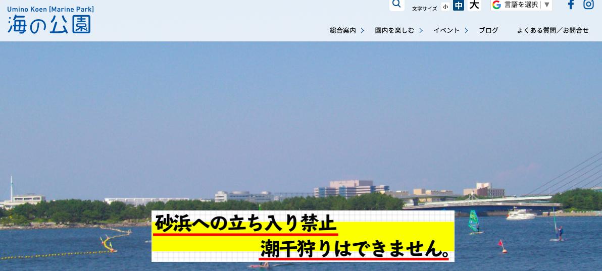 f:id:kyoya7zon:20200410144226p:plain