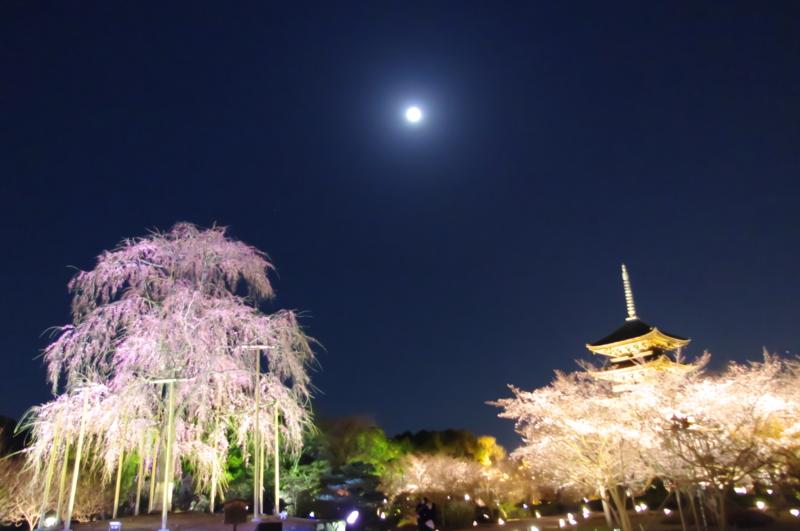 f:id:kyoya_izumi:20120406211706j:image