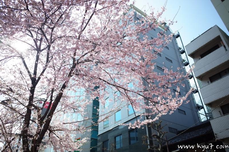 f:id:kyu_com:20170404181437j:plain