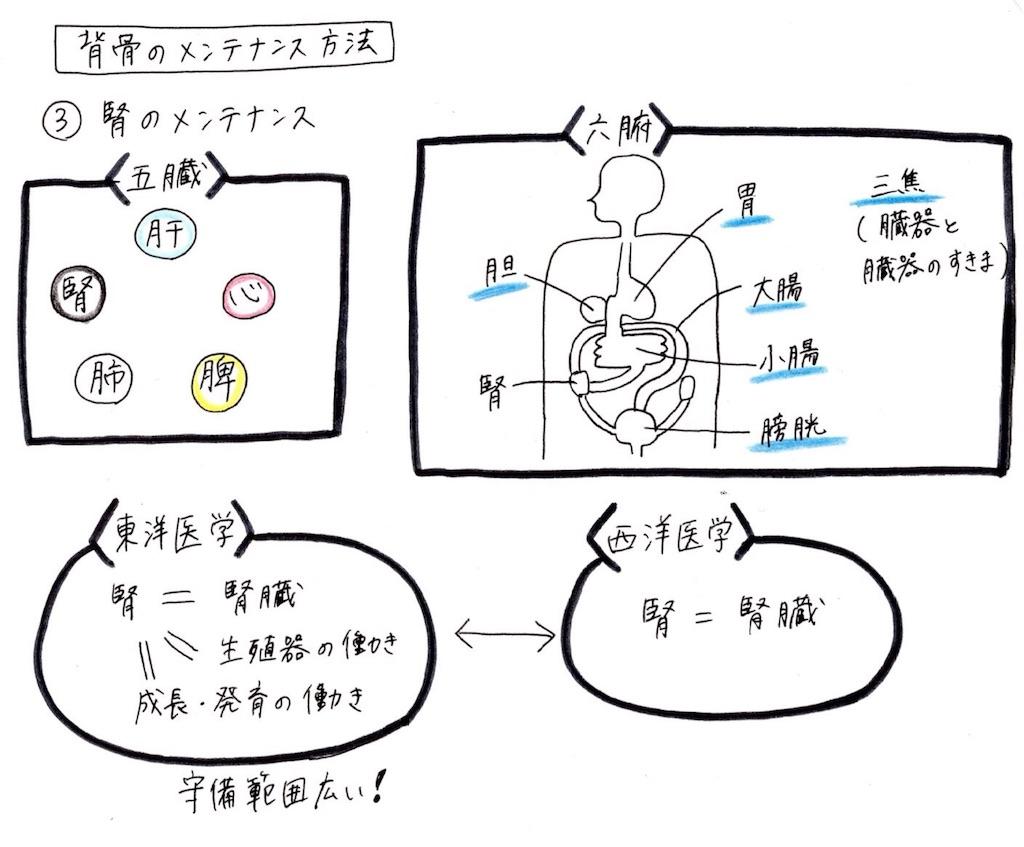 f:id:kyueisyougiku10kaidouzan:20180708051923j:image