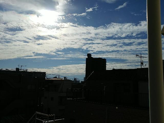 f:id:kyukakunonibuiinu148:20190920130355j:image