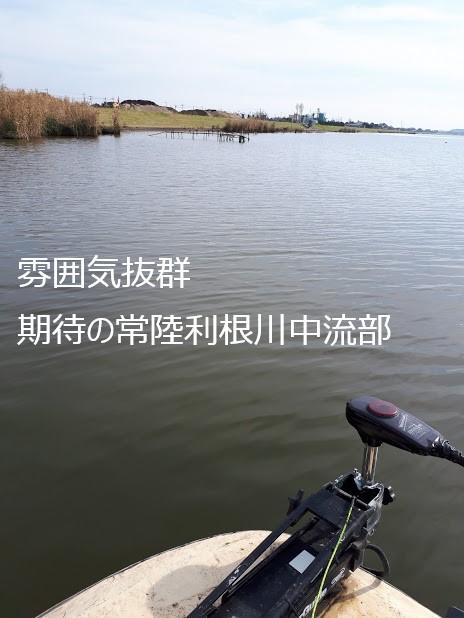 f:id:kyuko_love:20181125231303j:plain
