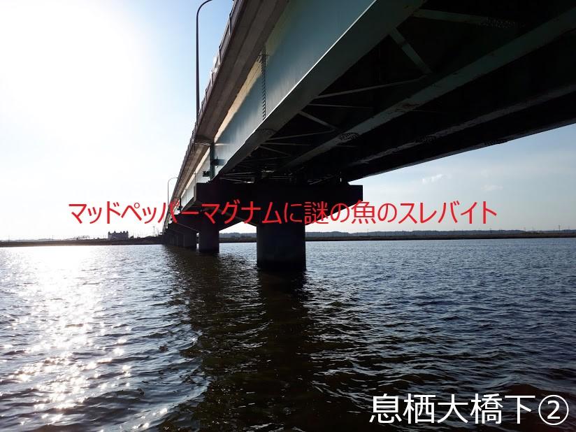 f:id:kyuko_love:20181125231434j:plain