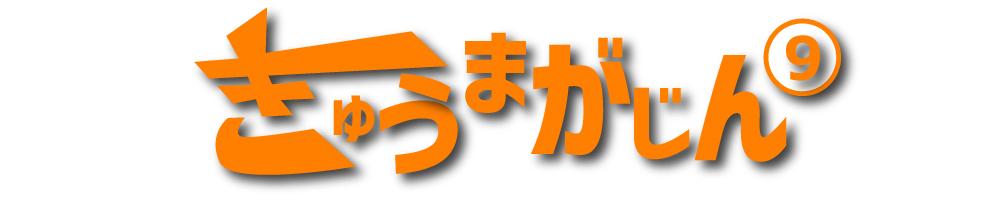f:id:kyuma-morita:20161231192827j:plain