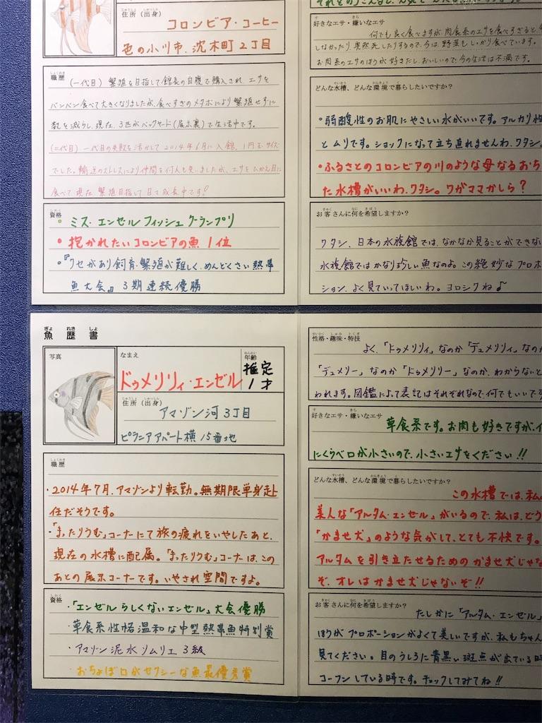 f:id:kyurifootball:20170720110019j:image