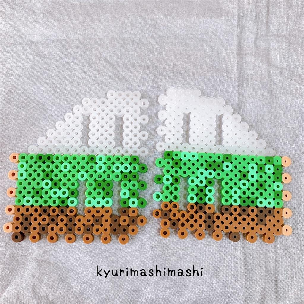 f:id:kyurimashimashi:20210422214038j:plain