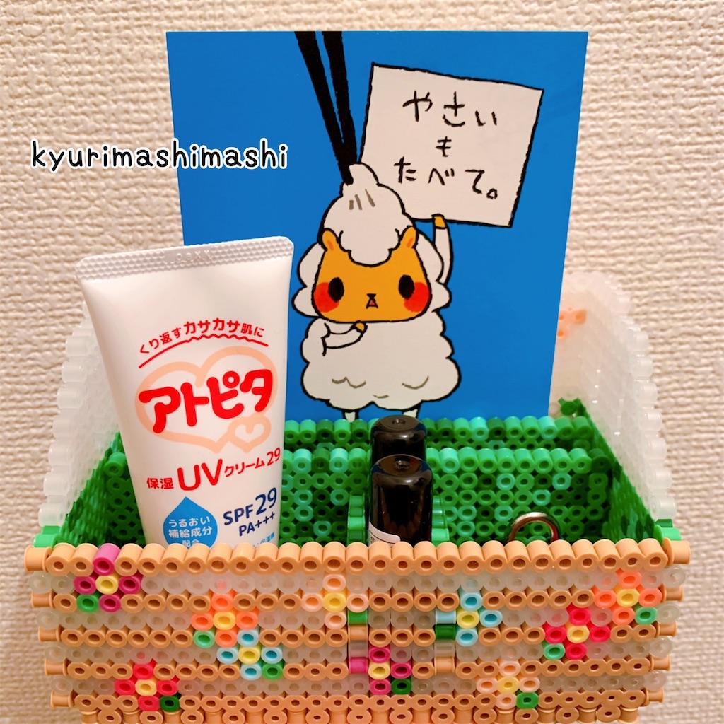 f:id:kyurimashimashi:20210422215132j:plain