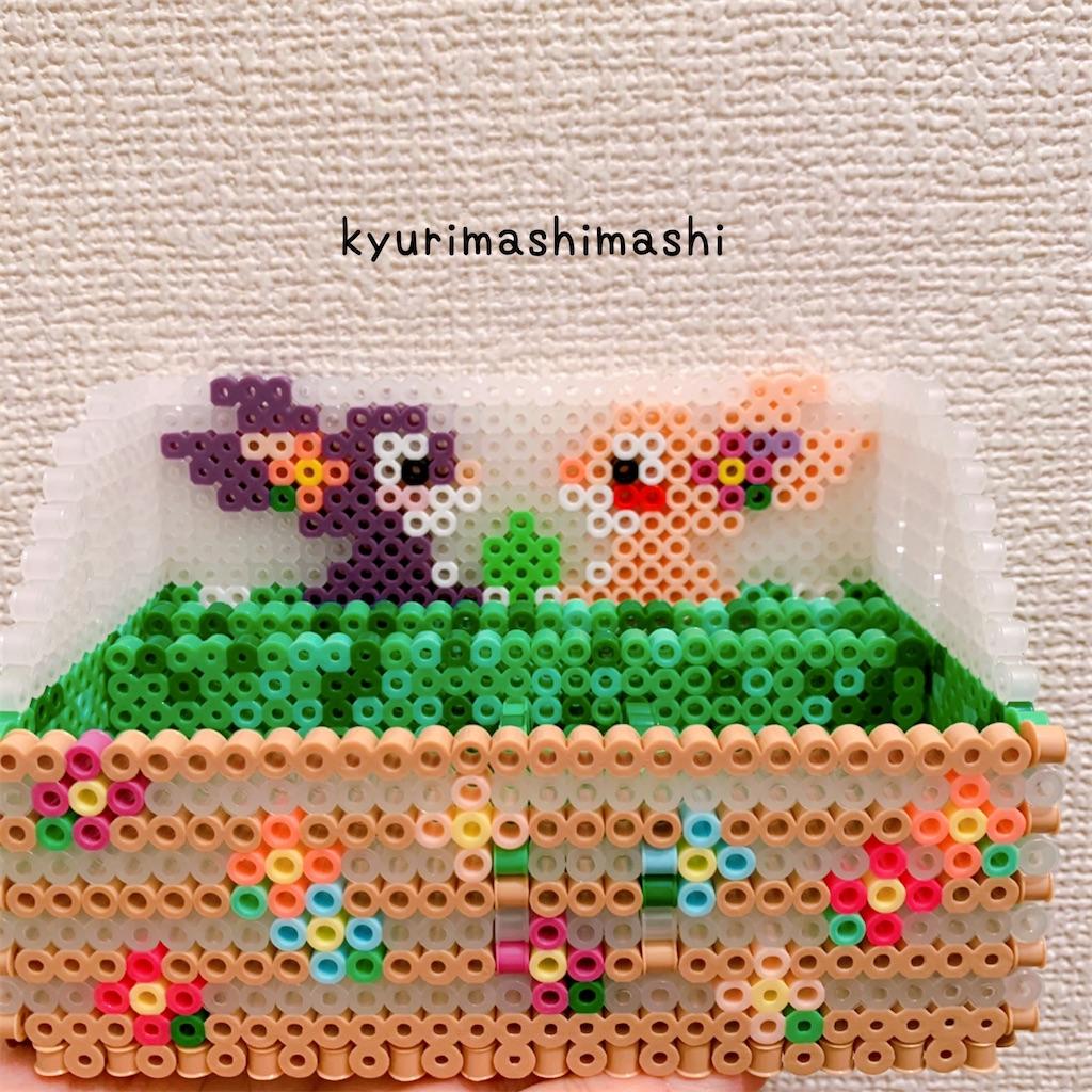 f:id:kyurimashimashi:20210422215411j:plain