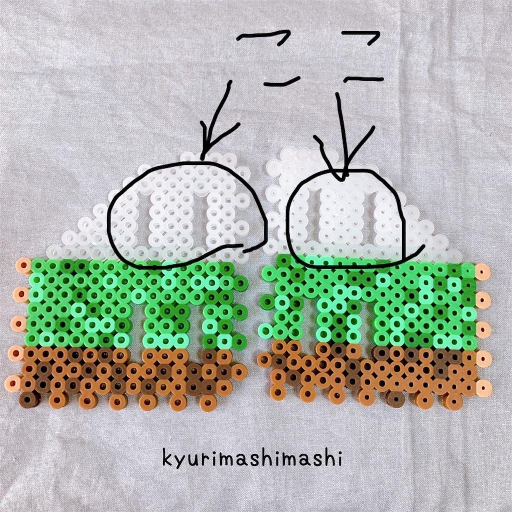 f:id:kyurimashimashi:20210424124123j:plain