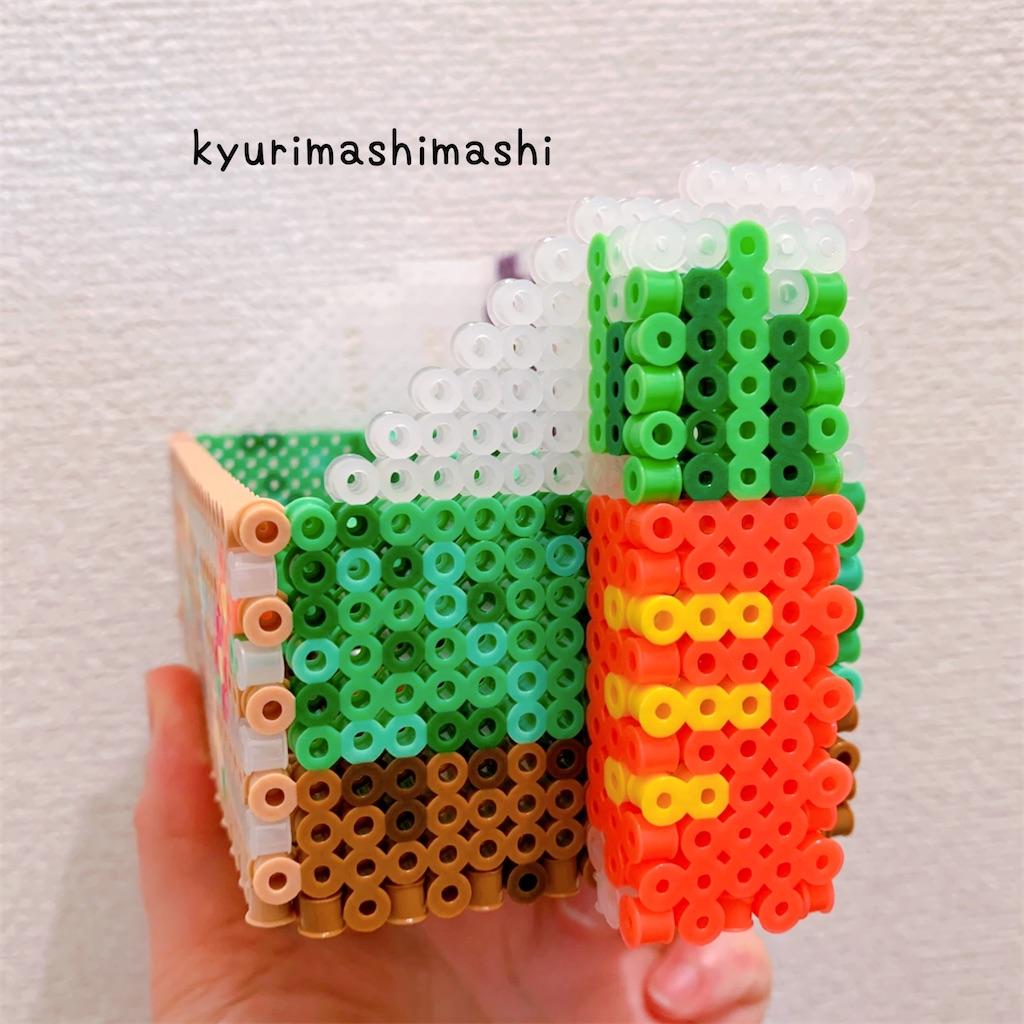 f:id:kyurimashimashi:20210424173448j:plain