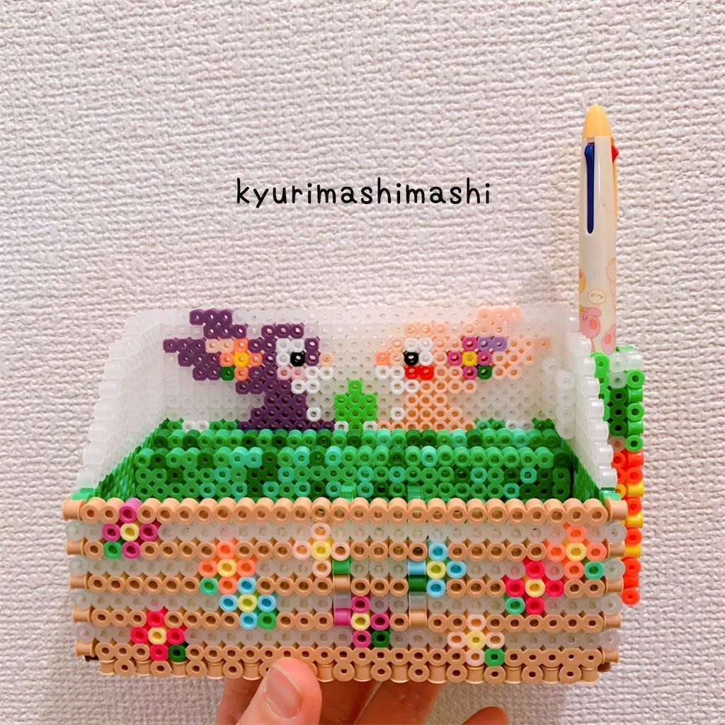 f:id:kyurimashimashi:20210424173452j:plain