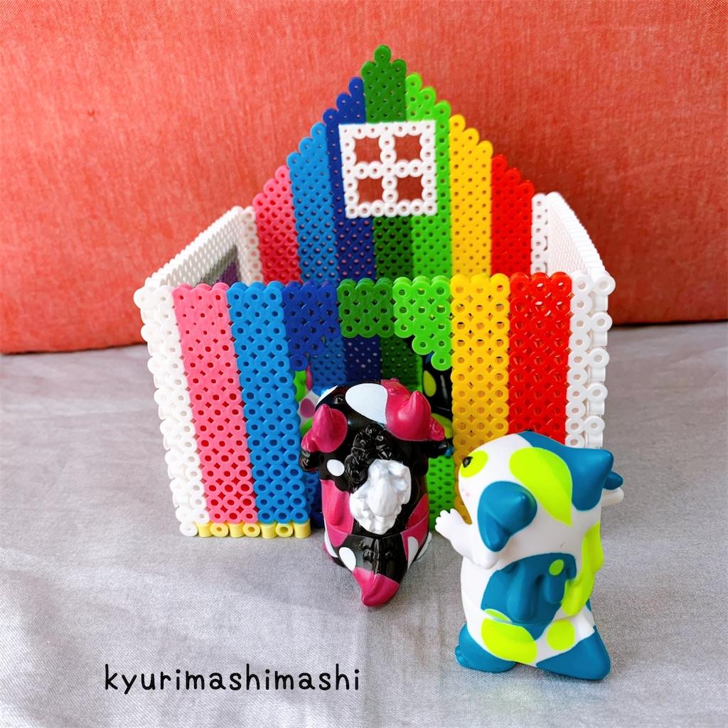 f:id:kyurimashimashi:20210430214711j:plain