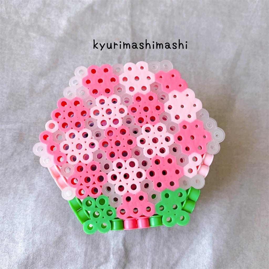 f:id:kyurimashimashi:20210506140356j:plain