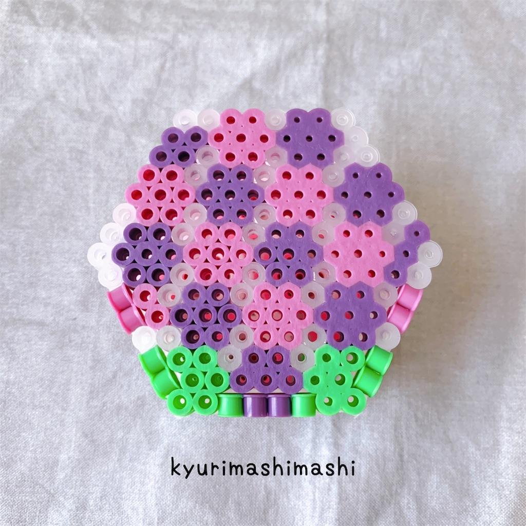 f:id:kyurimashimashi:20210506140423j:plain
