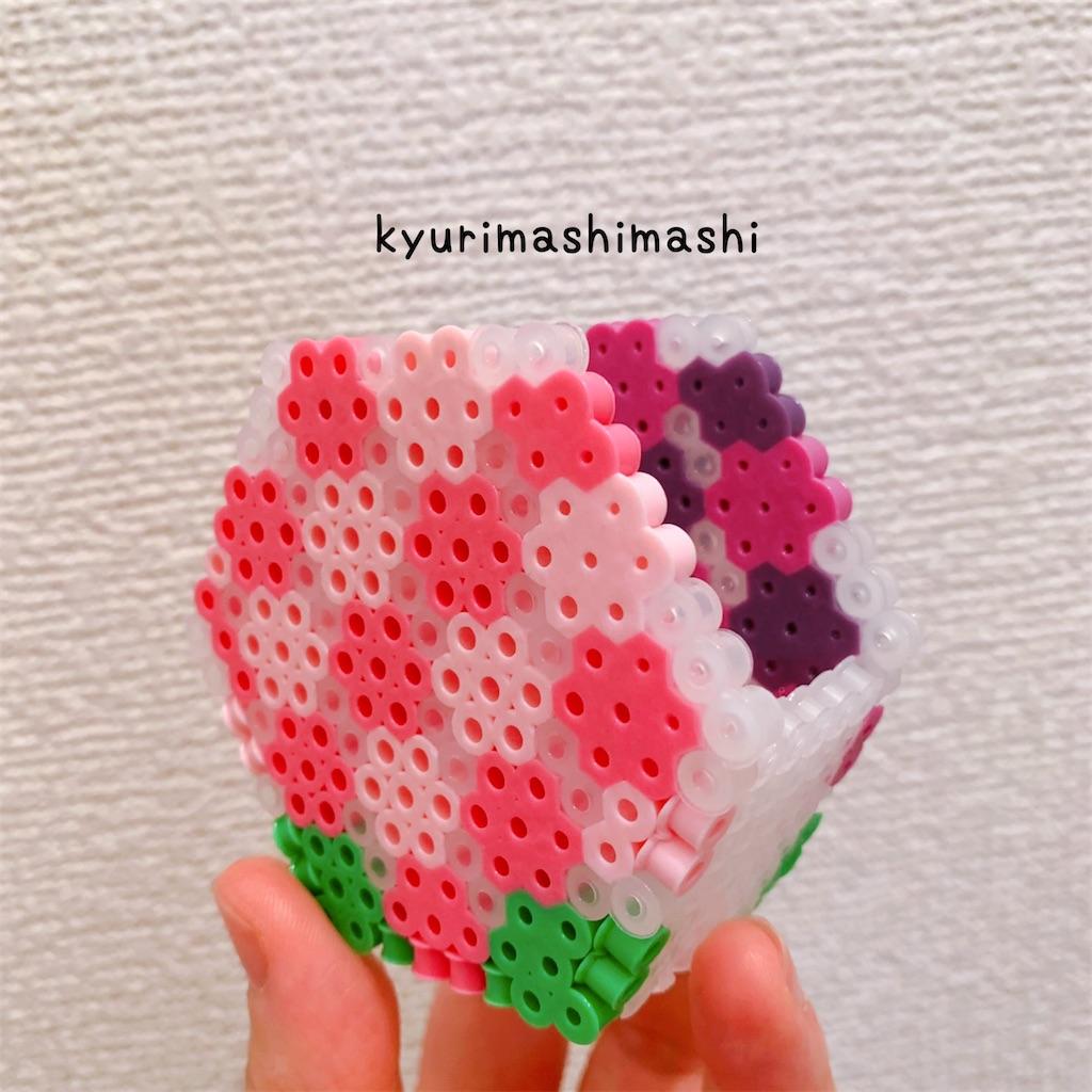 f:id:kyurimashimashi:20210506140441j:plain