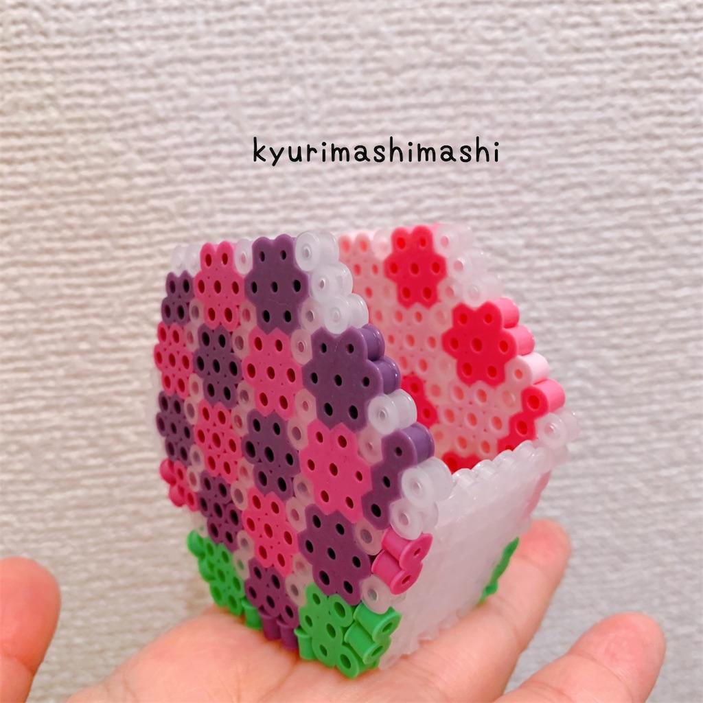 f:id:kyurimashimashi:20210506140445j:plain