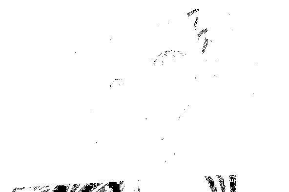 f:id:kyuusyuuzinn:20160329130918p:image:w400