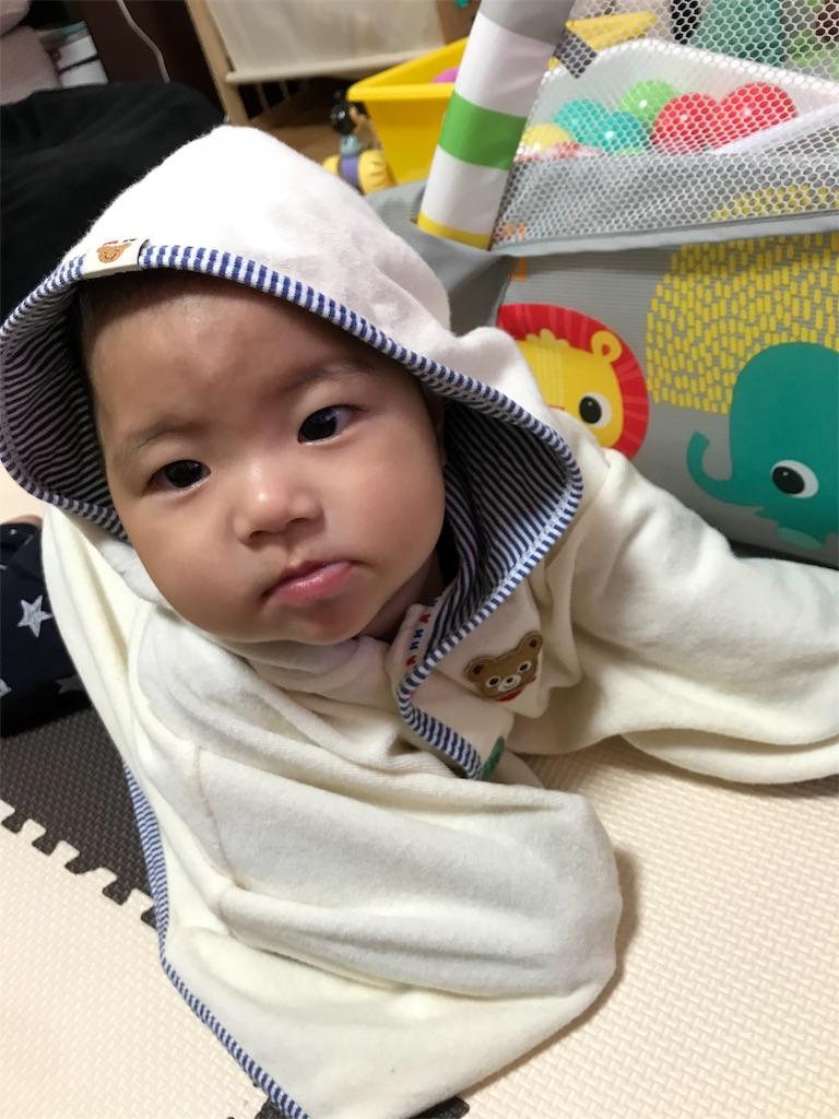 f:id:kz-papa_ay-mama:20181116154615j:image