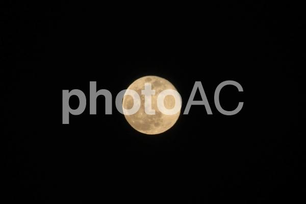 f:id:kz-photo:20200419080026p:plain