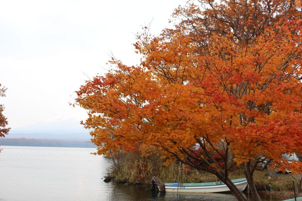大沼と紅葉