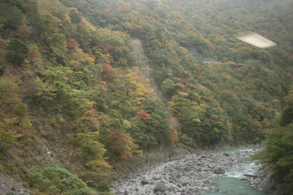 井川線の車窓
