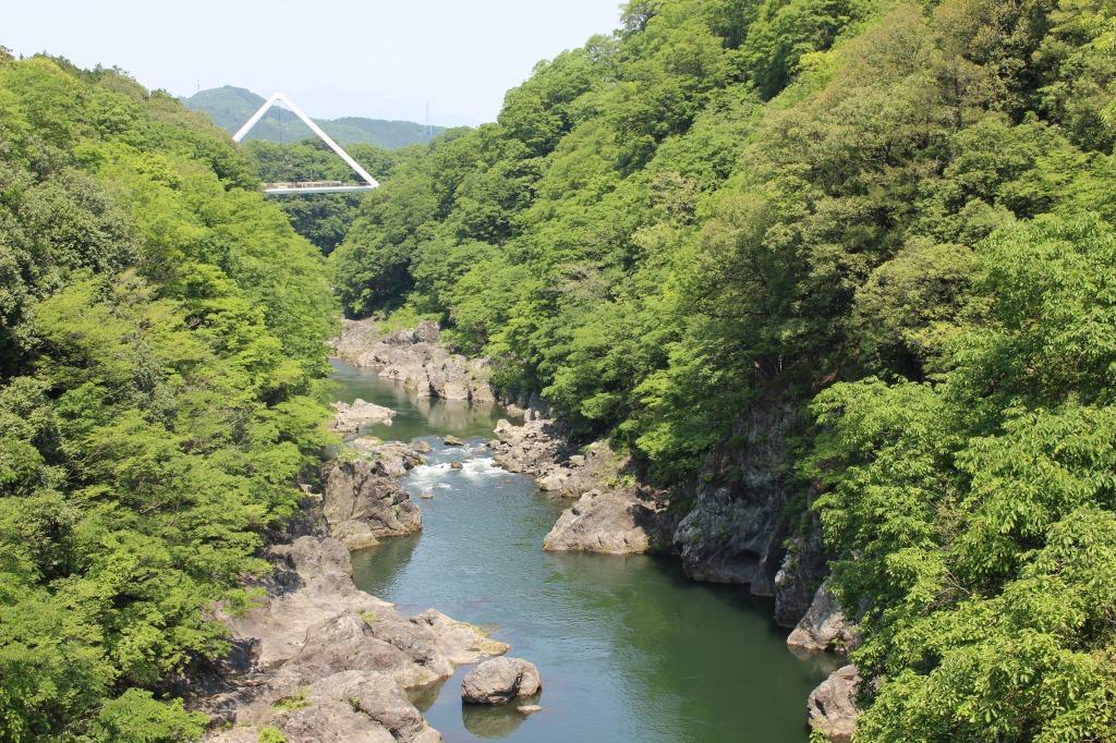 高津戸橋からはねたき橋を眺める
