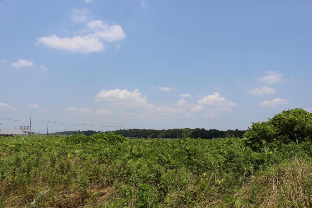 入地駅付近の景色