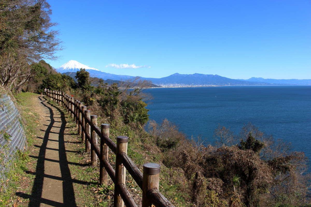 薩埵峠展望台までの遊歩道