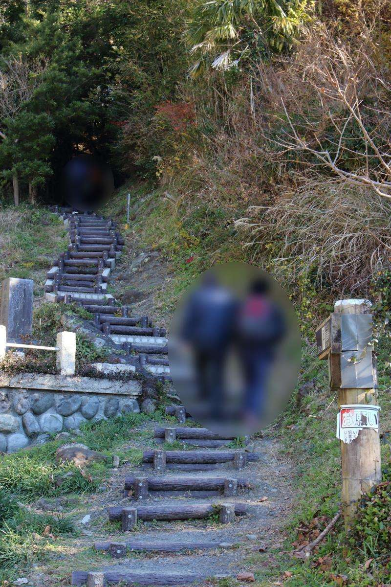 墓地の奥の木の階段を登ります