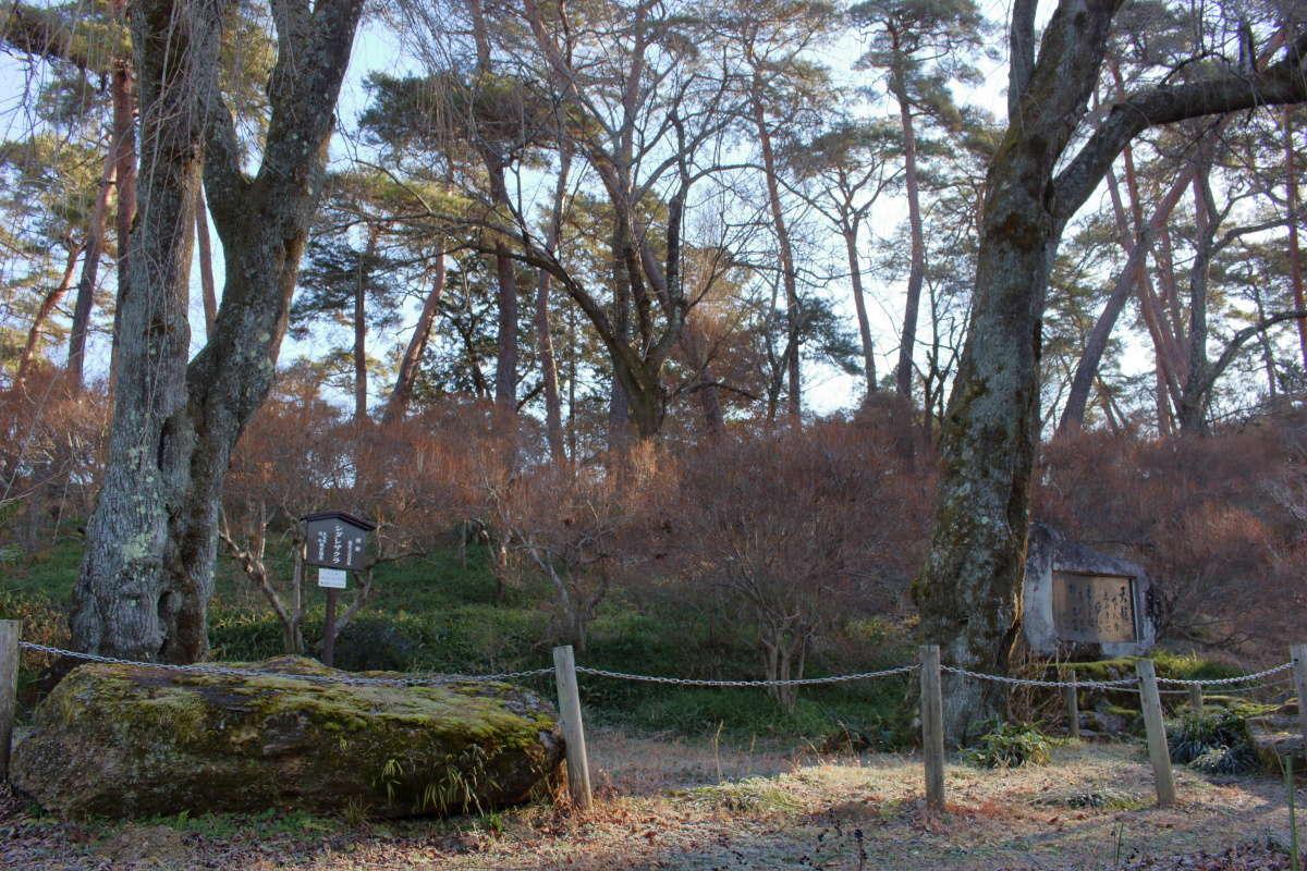 シダレサクラと歌碑が目印の「天竜峡第一公園」